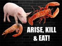 Pastor John S. Torell - sermon on ARISE, KILL & EAT! - Resurrection Life of Jesus Church